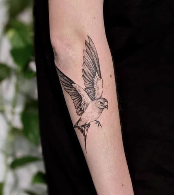 tatoeage-zwaluw