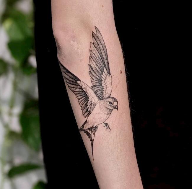 tattoo zwaluw onderarm