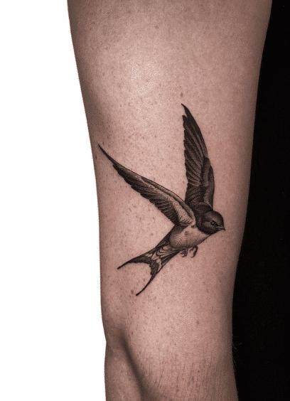 zwaluw tattoo arm